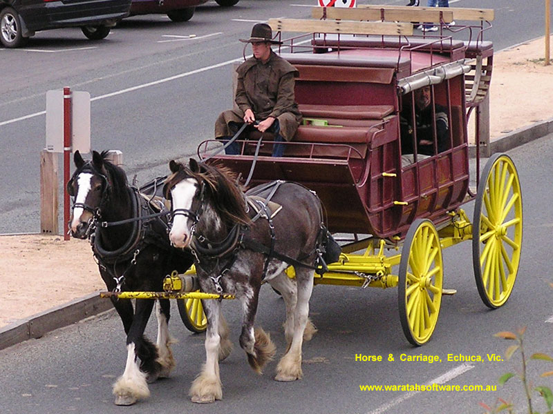 Horse & Carriage pb040004 image