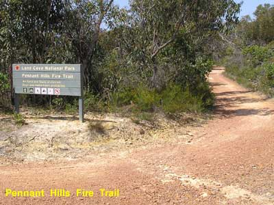 Pennant Hills Fire Trail