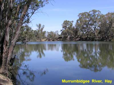 Murrumbidgee River at Hay image p8210052 131KB