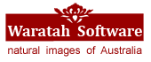 Waratah Software logo